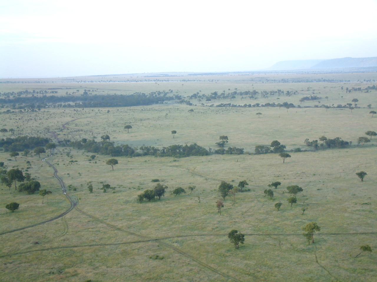 Ökosystem Serengeti (Quelle: Ralf Krüger)