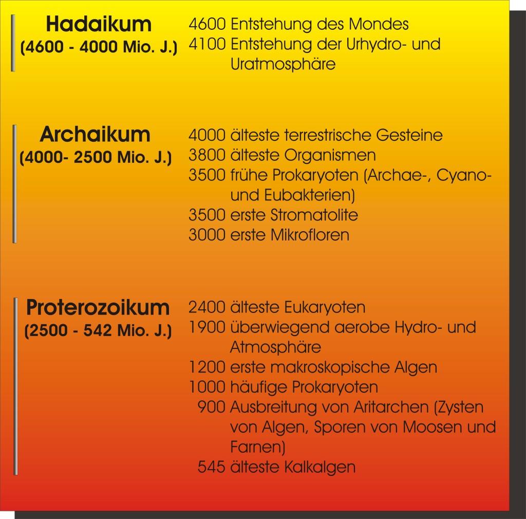 Präkambrium Bio
