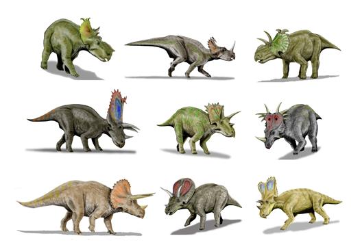 Rekonstruktionsbild Der Familie Ceratopsidae Heterodontosaurus Quelle: N.Tamura (CC BY-SA 3.0)